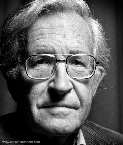 Gezi protests and Noam Chomsky's interview on anti-democratic system (2/2)